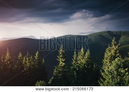 Incredible view of the remote hills. Location Carpathian, Ukraine, Europe. Picture of wild area. Scenic image of hiking concept. Moody weather. Explore the beauty of earth. Explore the environment.