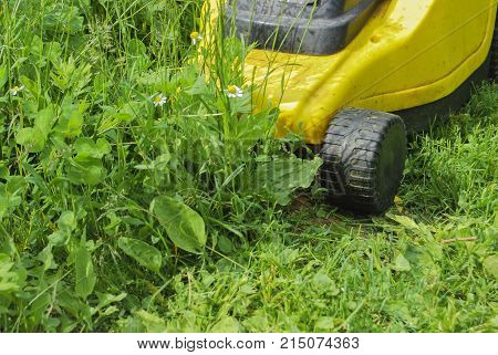 Yellow electric lawnmower in the process of grass mowing