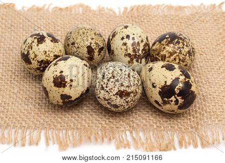 Group of quail egg close up on sack texture with frayed edges isolated on white background