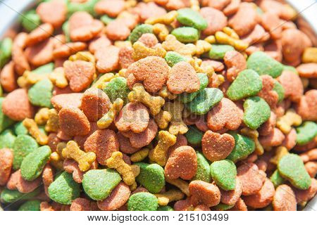 Dry dog food in bowl close up
