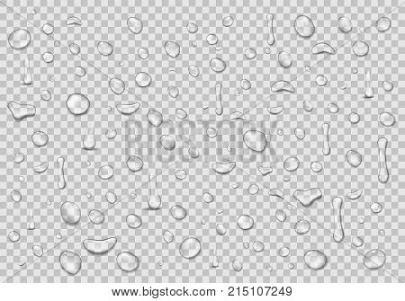 Water drops transparent background. Clean drop condensation. Realistic water background vector illustration EPS 10