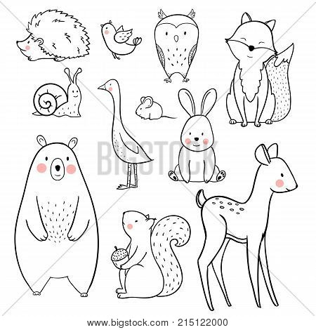 Nice vector animals for babies birthday cards