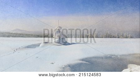 Mysterious winter landscape with majestic trees in winter. Magical winter snow covered tree. Photo greeting card. Winter landscape and snow wrapped trees in Sumava Czech republic