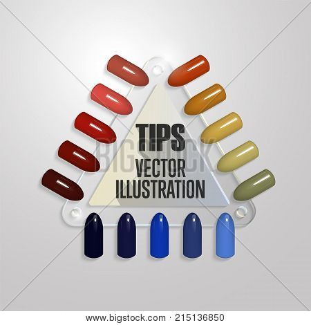 Tips. Set of false nails for manicure. Varnish color palette for nail extension. Transparent triangular palette with artificial nails