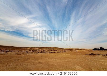 Panorama Of Negev Desert