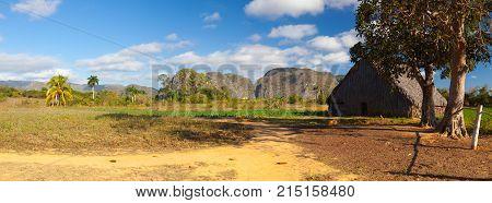 Scenery on the tobacco farmValley de Vinales Pinar del Rio Cuba.
