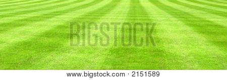 weiten Blick der Rasen