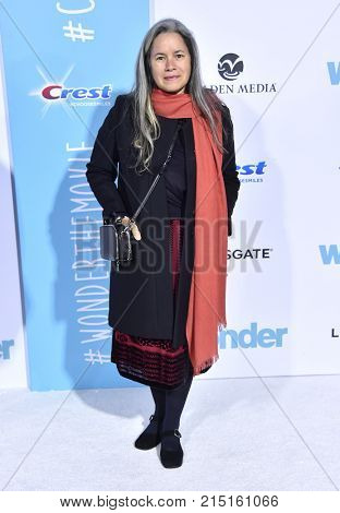 LOS ANGELES - NOV 14:  Natalie Merchant arrives for the 'Wonder' World Premiere on November 14, 2017 in Westwood, CA