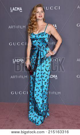 LOS ANGELES - NOV 04:  Amy Adams arrives for the 2017 LACMA Art + Film Gala on November 04, 2017 in Los Angeles, CA