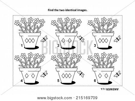 IQ training find the two identical pictures with potted flowers visual puzzle and coloring page. Answer included.