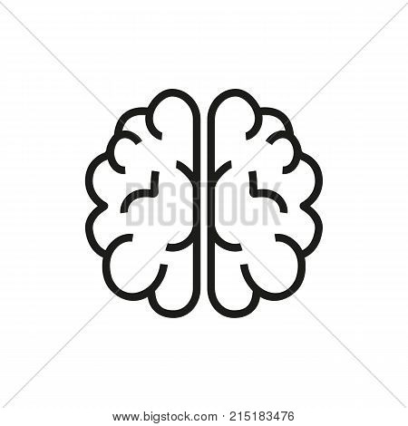 Brain hemisphere. Head, anatomy, intelligence. Mind concept. Can be used for topics like neural science, creativity, intelligence