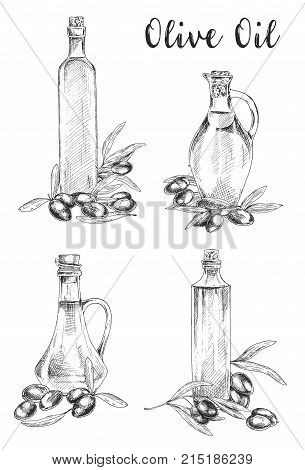 Set of isolated sketches of glass bottle with oil liquid near branches or twig with olive fruit berries. Healthy vegetarian or vegan greek or italian oil product. Organic, agriculture ingredient