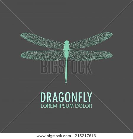 Logo - Green Dragonfly. Vector Logo Template Profile Of A Dragonfly. Object Isolated On Gray Backgro