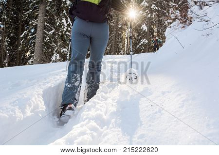 Closeup of hiking boots on a snow path. Trekking in winter forest.