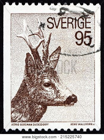 SWEDEN - CIRCA 1972: a stamp printed in Sweden shows roe deer capreolus capreolus is a Eurasian species of deer circa 1972