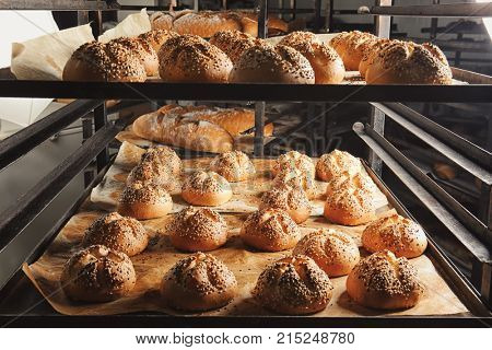 Tasty buns with sesame on shelving in bakery
