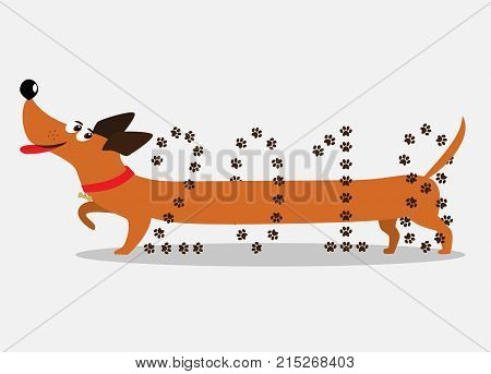 Dog symbol of new year 2018. Cute cartoon dachshund dog going through number 2018. Abstract isolated dachshund logo badger dog icon element for new year of dog 2018 design. Vector illustration.