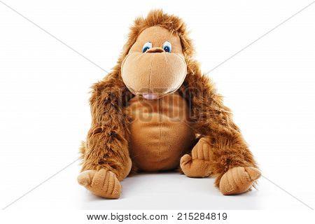 Monkey plush toy in studio. Brown monkey cute fake monkey, plush monkey toy. Chimpanzee, jocko gorilla anthropoid hominids monkey toy. Plushmonkey with white background. Cute photo.
