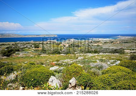Views towards Gozo and Comino seen from the Red Fort with yellow wildflowers in the foreground Malta Europe.