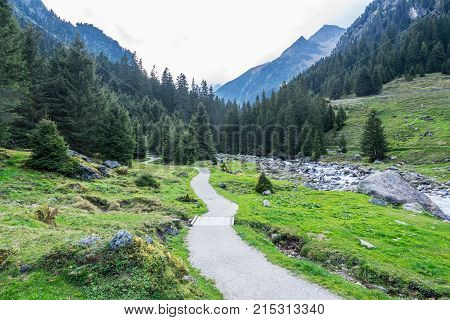 Mountain river and trees landscape natural environment. Hiking in the alps. Grawa Waterfall in Stubai Valley Tyrol Austria