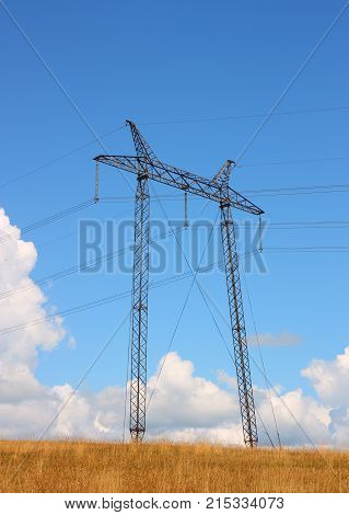 The electrical grid near field  a background