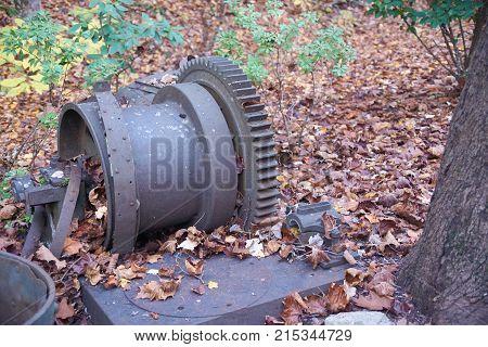 Large old metal gear rusting in leaves