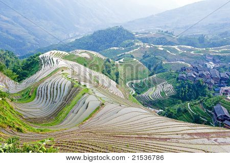 Rice terraces and village in South China poster