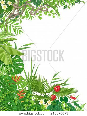 Colorful leaves and flowers of tropical plants background with space for text. Vertical side border made with monstera fern palm fronds liana branches. Tropic rainforest foliage frame.