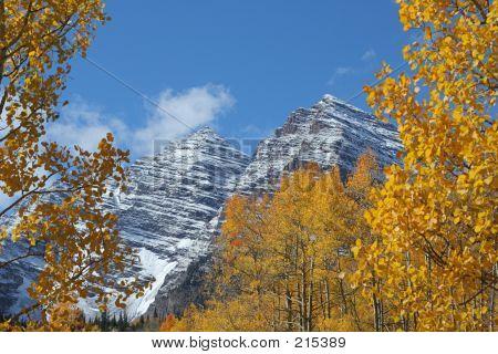 Maroon Bells, Autumn Aspens
