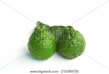 makrut lime or kaffir lime (Citrus hystrix) on white background