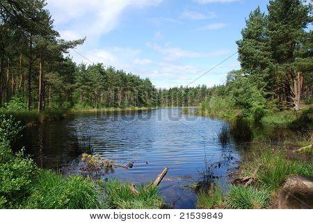 Bordie Loch