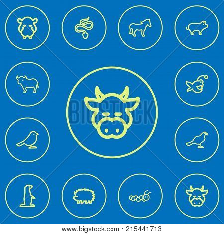 Set Of 12 Editable Zoology Outline Icons. Includes Symbols Such As Hippo, Gopher, Steed And More