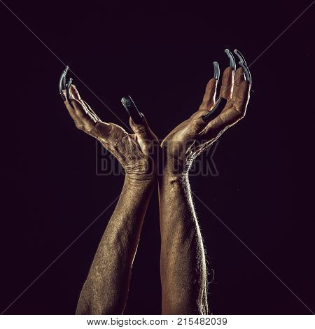 Closeup view of two female old scary mystic hands with long black nails on fingers of witch zomby demon or devil on halloween holiday character in studio indoor on dark background square picture