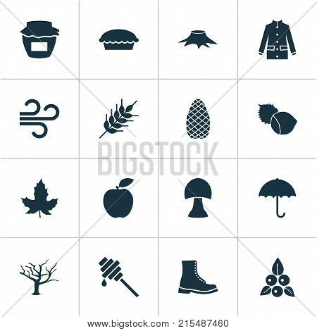 Seasonal icons set with timber, filbert, apple and other cedar elements. Isolated vector illustration seasonal icons.