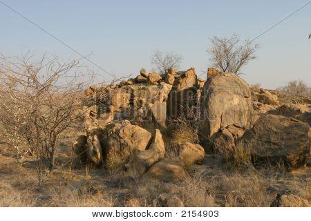 Bushland Rocks
