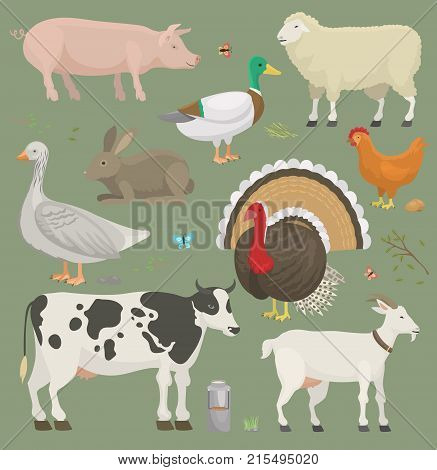 Different home farm vector animals and birds like cow, sheep, pig, duck set illustration. Cartoon mammal comic farmers animals design agriculture. Colorful character on nature background.