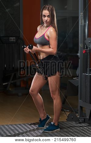Sexy fitness woman in sportwear and sneakers doing exercises in the gym. Young woman posing with handle of simulator and looking at the camera.