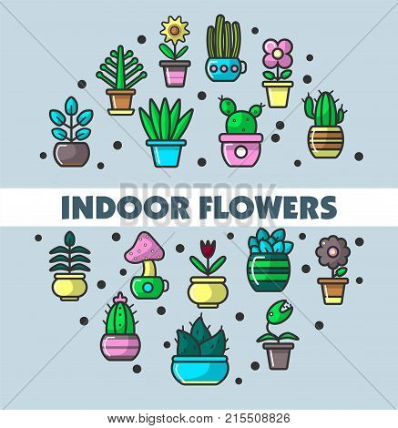 Indoor flowers and house plants poster for home decorative gardening. Vector line icons of exotic mushroom and aloe succulent cactus, house petunia or gardenia blossom for indoor garden planting