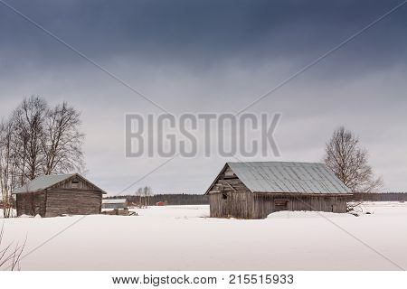 The white snow emphasizes the grey color of the old barn houses. They look very sad and abandoned in all that white surrounding them.
