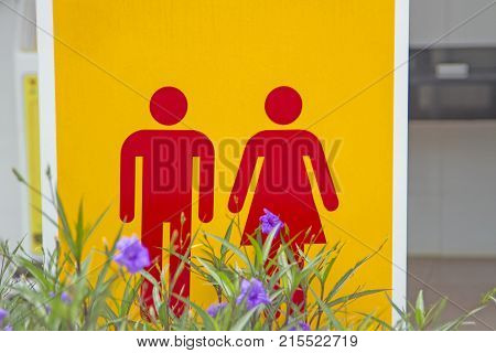 Male red-female toilet symbol yellow background with purple flowers