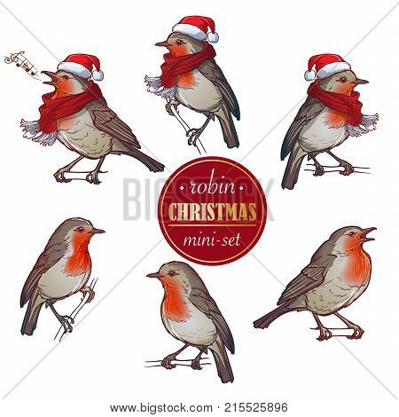 Christmas Robin. Set of 6 hand drawn sketch style pictures of Robin in different angles with or without hat and scarf. Colourfull painting isolated of white background. EPS 10 Vector illustration