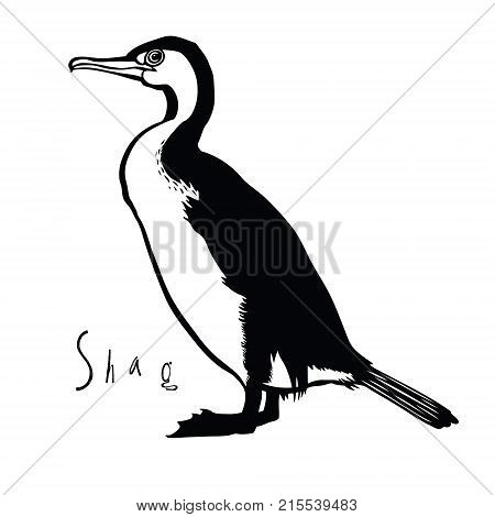 Birds collection Shag Black and white colors