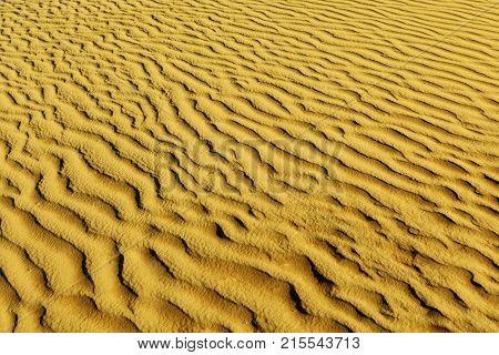 Close up desert dune background.Sand dunes at sunset in the Sahara Desert