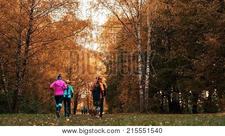 Beautiful forest, girls run park autumn. Running athletes park run early morning. Several children are running woods doing sports. Healthy lifestyle.