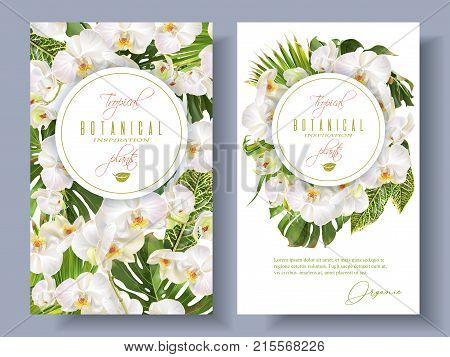 Vector botanical vertical banners with tropical leaves, orchid flowers on white. Design for cosmetics, spa, health care products, travel company. Can be used as summer background