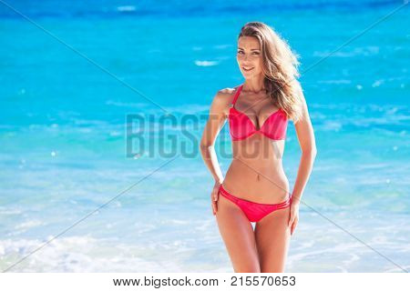Beautiful young woman in sexy bikini standing at sea beach