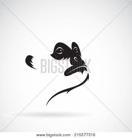 Vector of northern white-cheeked gibbon face design on a white background. Wild Animals.