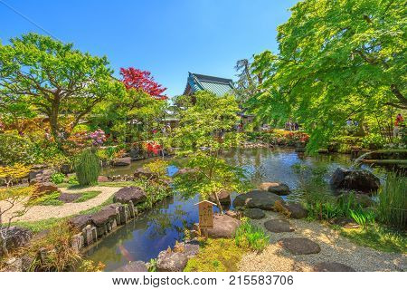 Kamakura, Japan - April 23, 2017: small lake surrounded by a flowering garden in a sunny day with blue sky at Hase-dera Temple or Hase-kannon, Kanagawa Prefecture, Kamakura. Spring season.