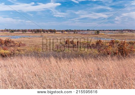 tall grass prairie and wetlands of necedah national wildlife refuge in central wisconsin