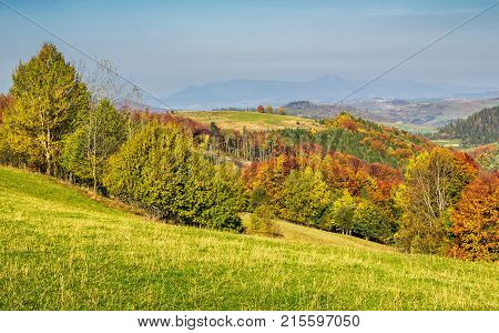 Forested Rural Hillsides In Autumn